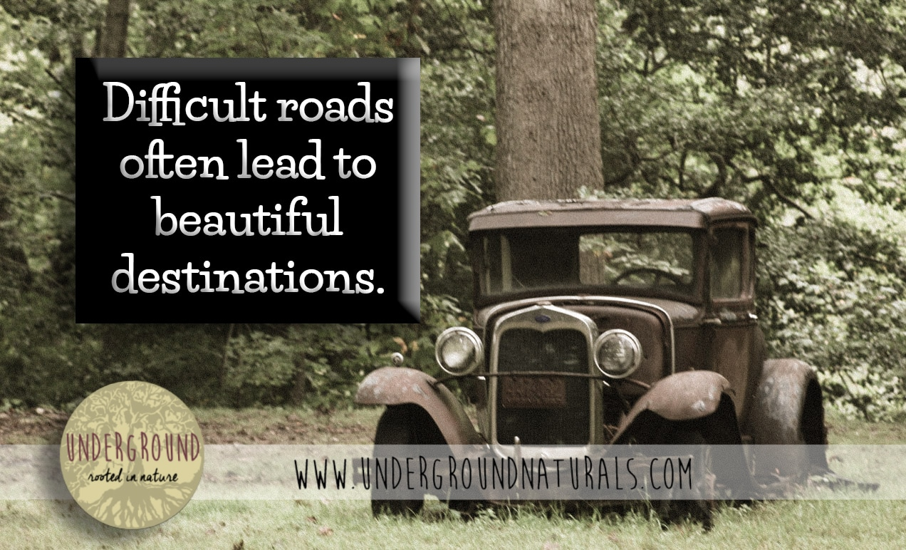 Underground Naturals always wants to encourage you to take the road less traveled. Even when you don't expect it, difficult roads do often lead to the most beautiful destinations.  #undergroundnaturals #allnaturalskincare #theroadlesstraveled #beautifuldestinations http://www.undergroundnaturals.com/undergroundblog